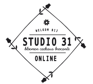logo studio 31